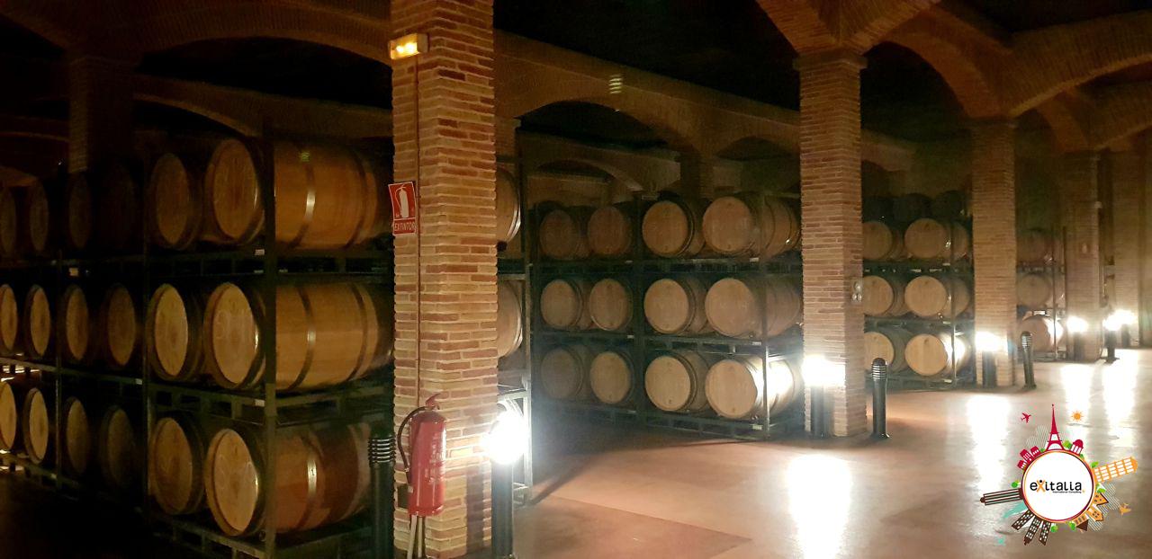 promoción del vino análisis y estrategia
