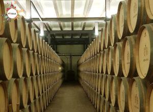 poner en valor los vinos